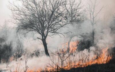 Medidas de prevención de Incendios